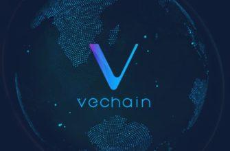Описание криптовалюты VeChain. Скорость, конфиденциальность, добыча.